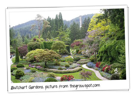 garden inspiration get domain pictures